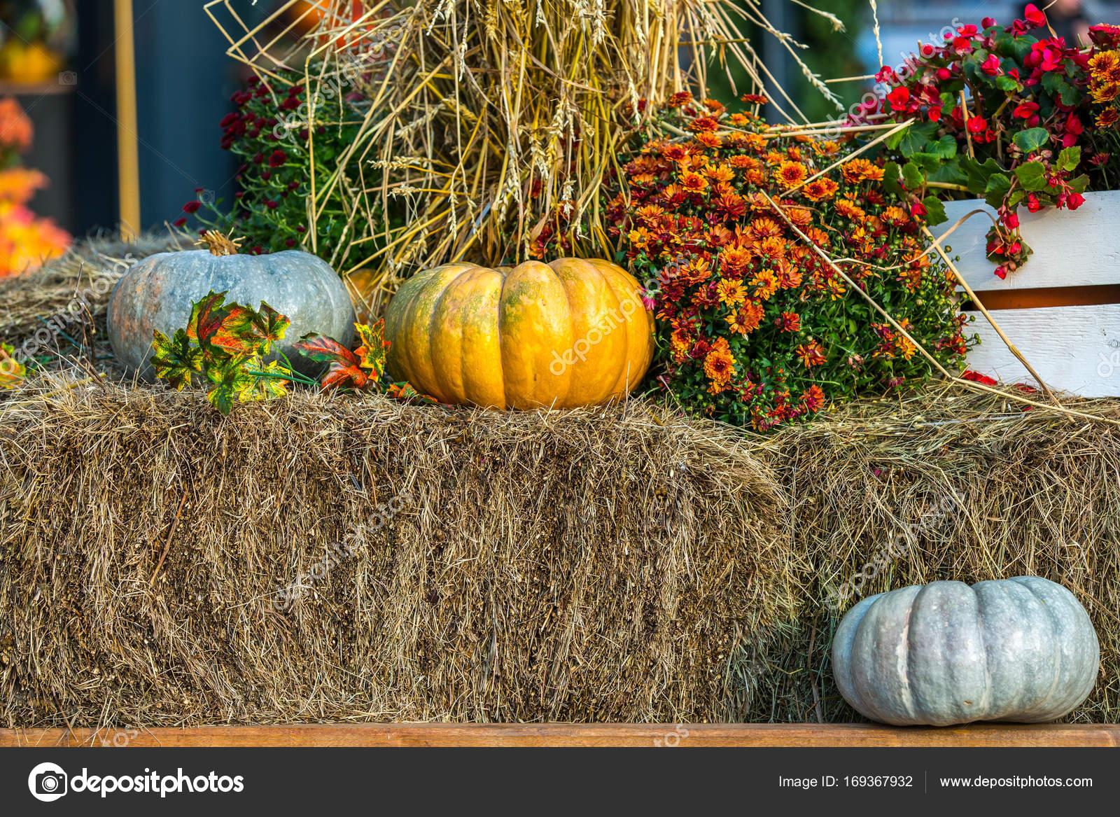 Красочная осень в городе Москва, Россия. — Стоковое фото ...