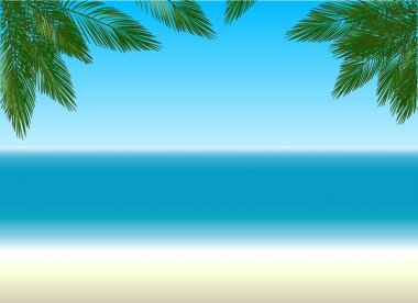 beach and palm trees. color background.