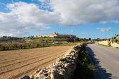 Architecture of Mdina on Malta