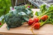 Gruppo di verdure dellorto