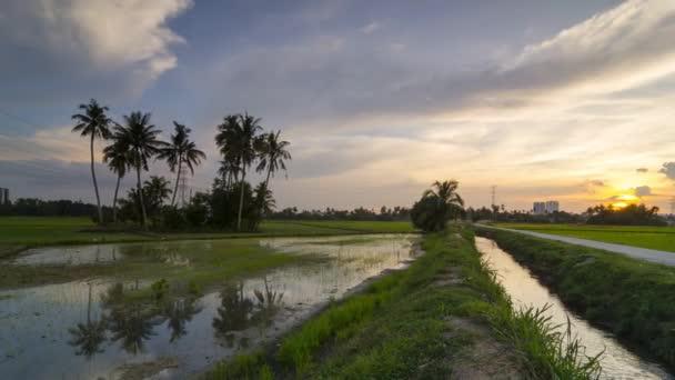Timelapse cesta k tropické přírody krásná