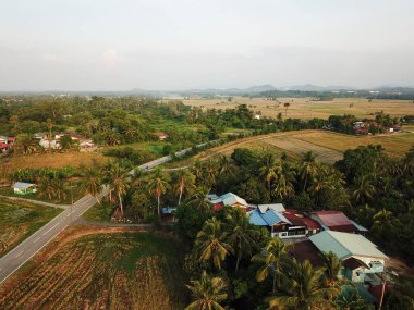 Traditional Malays village at paddy field.