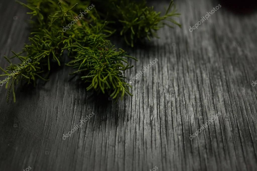 Black wooden background with moss on the sides. Grunge texture
