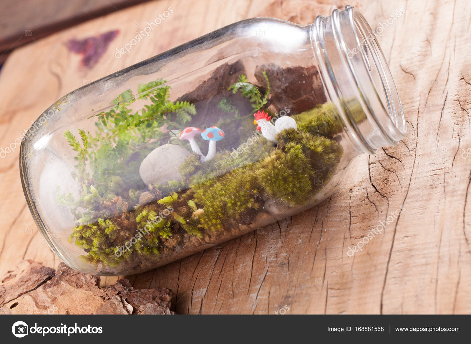 A Terrarium Garden Scene In A Clear Bottle With Moss Pebble Chicken And Mushroom Toy Put On Wooden Table Stock Photo Image By C Akeeris 168881568