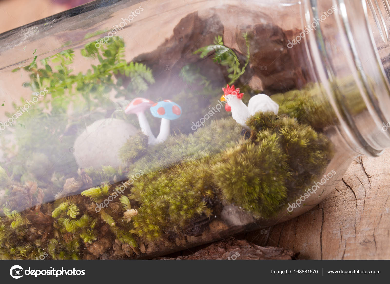 A Terrarium Garden Scene In A Clear Bottle With Moss Pebble Chicken And Mushroom Toy Put On Wooden Table Stock Photo C Akeeris 168881570