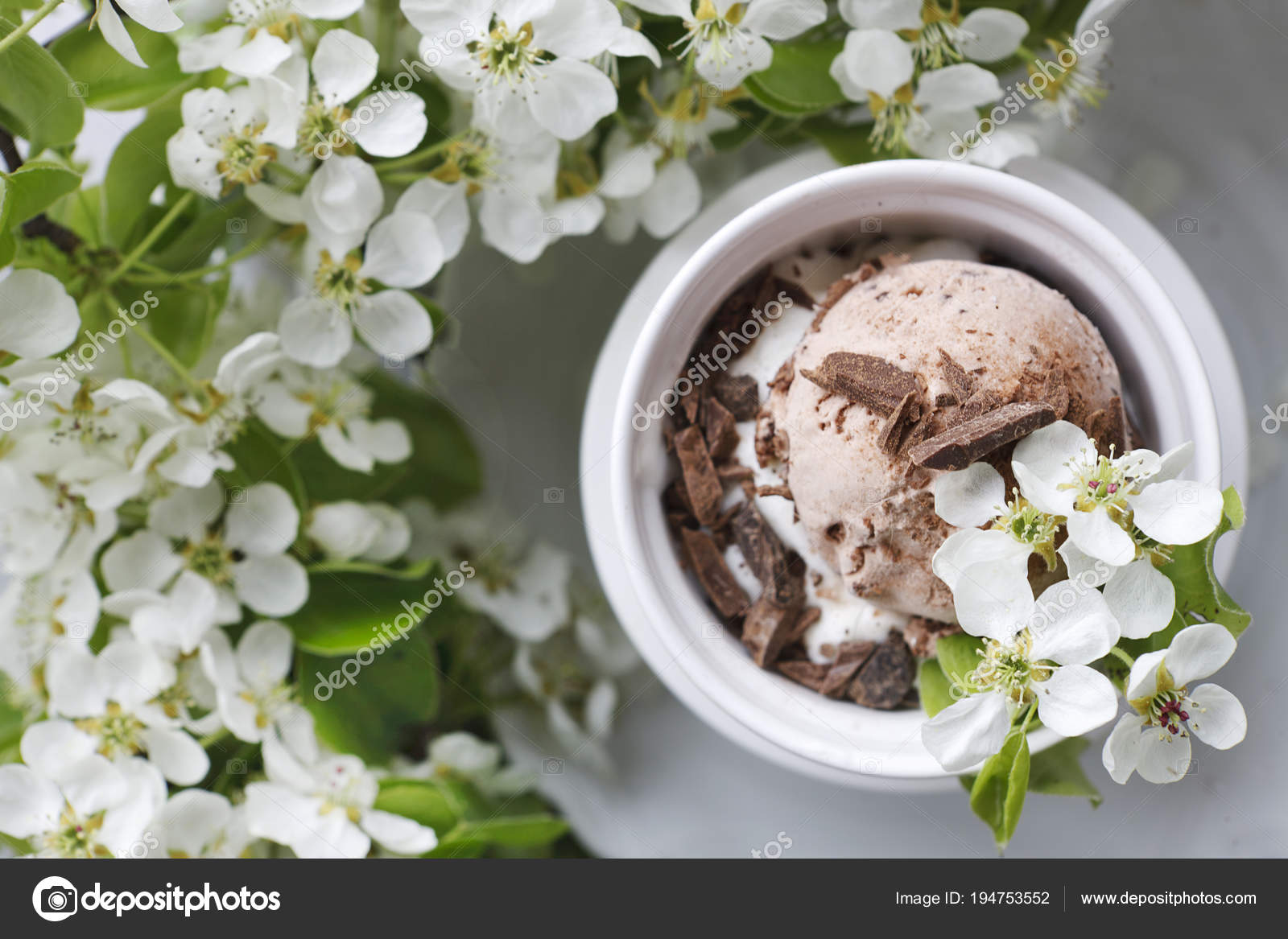 Close Chocolate Ice Cream White Bowl Surrounded Beautiful Flowering