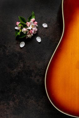 Acoustic guitar and apple tree flowers on dark brown background
