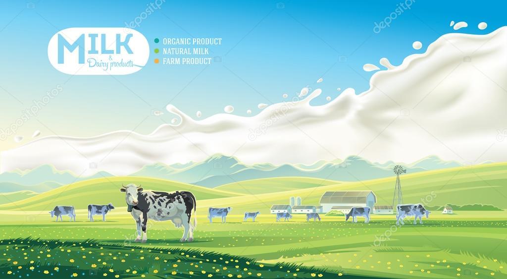 Milk Farm Poster Background Stock Vector
