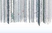 Fényképek Téli erdő háttér