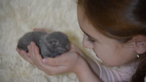 kis vak cica született ma méretű egy tenyér, a gyermek