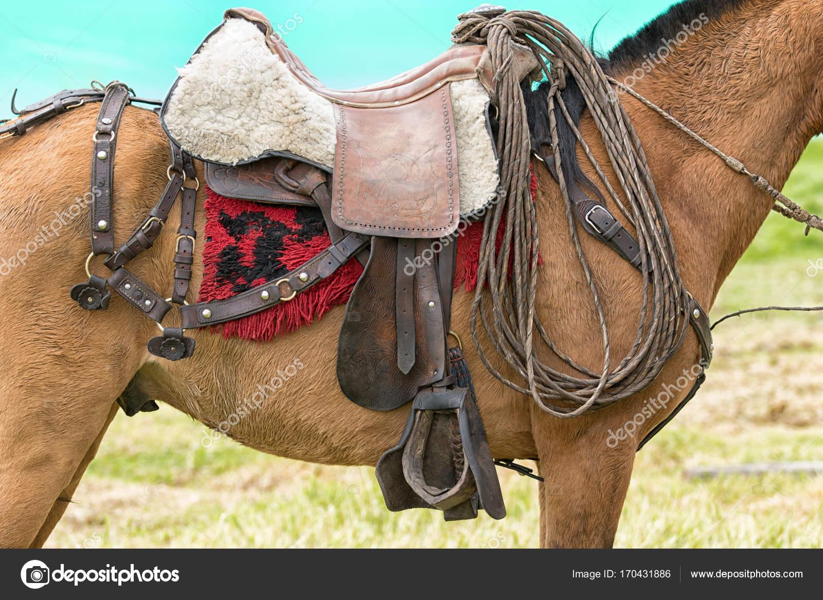 651e0afbe3 03 de junio de 2017 Machachi, Ecuador: caballo de trabajo vaquero equipado  para el trabajo en el área rural de los Andes — Foto de ...