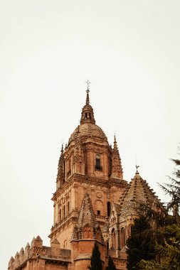 view of Cathedral of Salamana