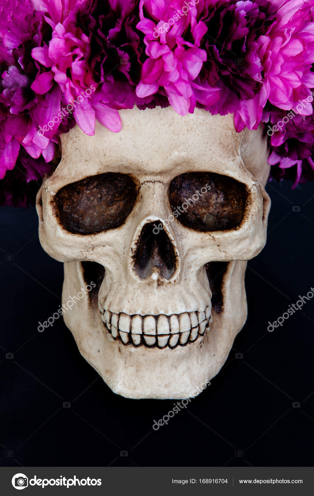 Human skull with wreath of pink flowers stock photo gelpi 168916704 creepy human skull with wreath of pink flowers on black background photo by gelpi mightylinksfo