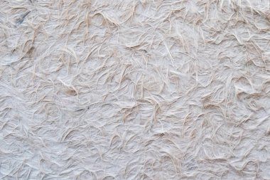 background of white feathers