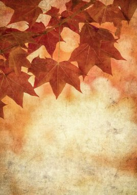 Grunge background with autumn leaves stock vector