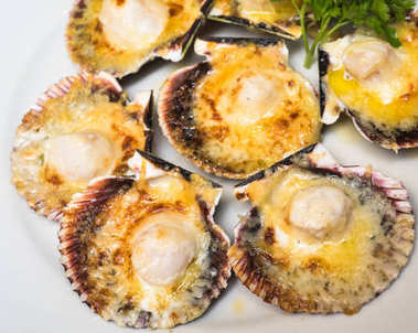 Baked parmesan in scallops