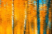 reflections in the water,  autumn background