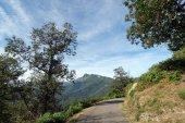Strada di Castagniccia e della montagna San Petrone