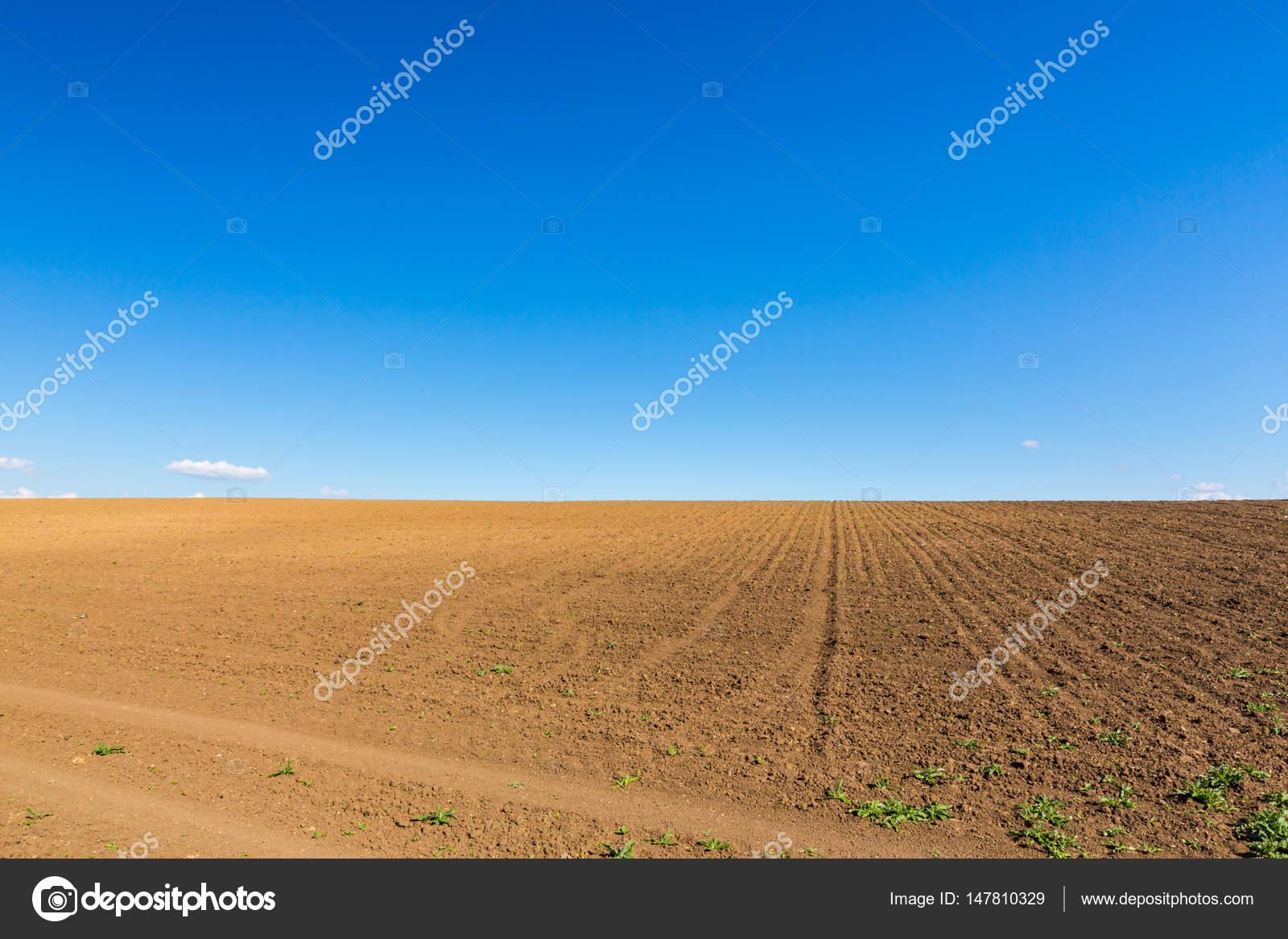Resumen paisaje rural en la primavera, con horizonte infinito ...