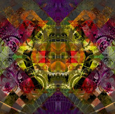 Reptile on colorful abstracted background