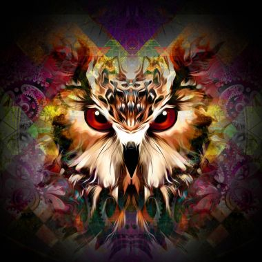 Brown owl on colorful abstracted background