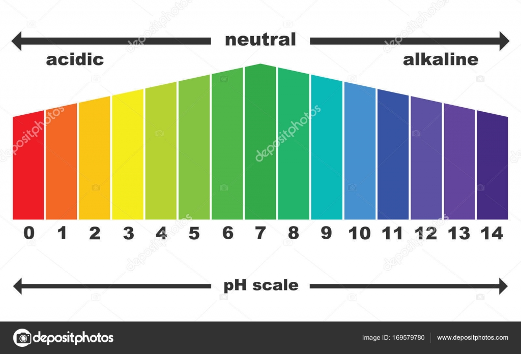 Scale of ph value for acid and alkaline solutions vector isolated scale of ph value for acid and alkaline solutions vector isolated stock vector nvjuhfo Images