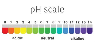 scale of ph value for acid and alkaline solutions, infographic acid-base balance. scale for chemical analysis acid base. vector illustration