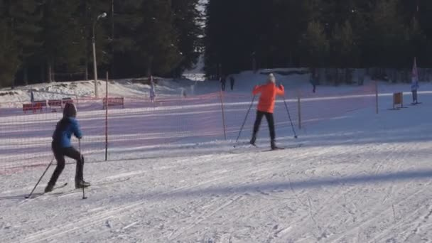 lyžaři, muži, ženy, dospělé, děti, běh na lyžích v sněžilo v zimní krajině Rusko