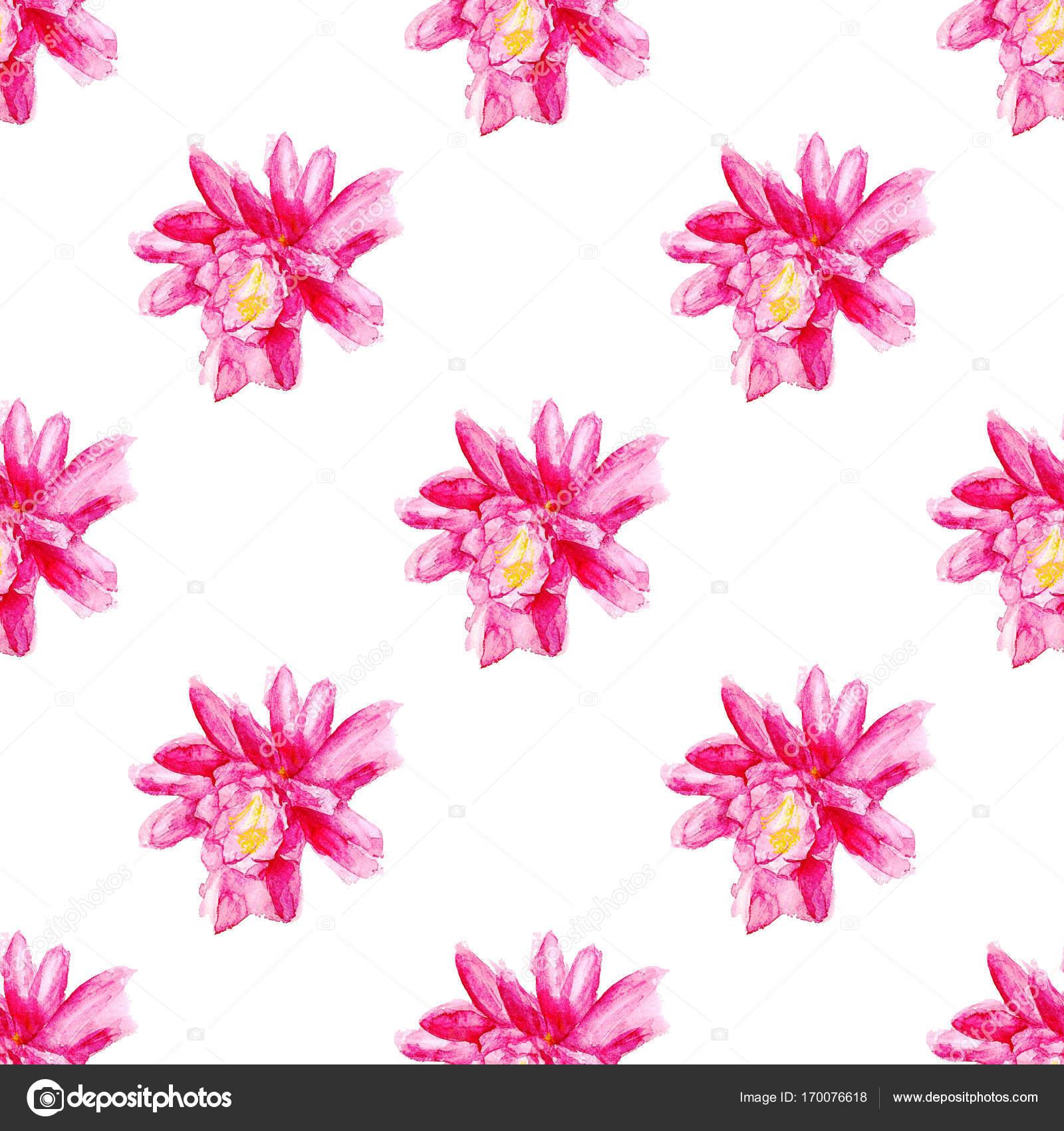 patrones sin fisuras con flor roja — Foto de stock © shoshina #170076618