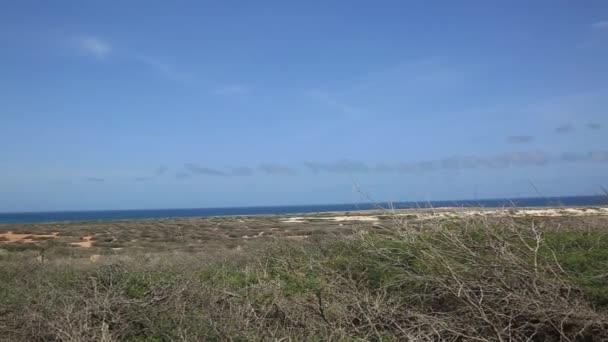 Off-Road bellezza naturale Aruba di Aruba. Costa Nord isola di Aruba. Paesaggio naturale stupefacente e cielo blu