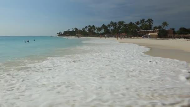 Grande onda nel Mar dei Caraibi è rompere la costa. Isola di Aruba. Priorità bassa della natura bella