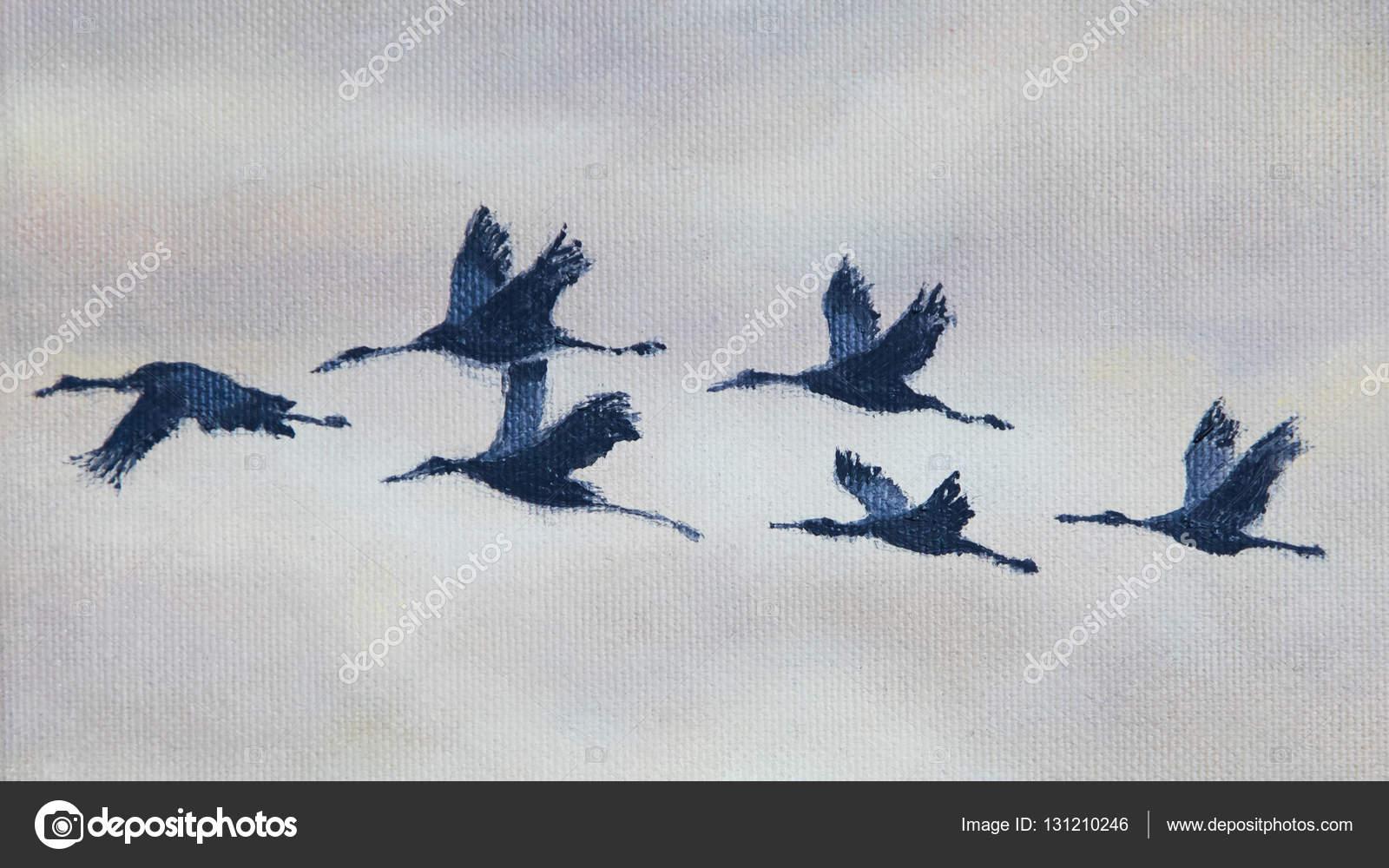 Uçan Kuşların Boyama Stok Foto Michaklootwijk 131210246