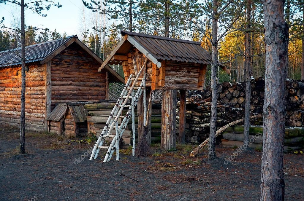 Russia. Karelia. Territory of the dog nursery