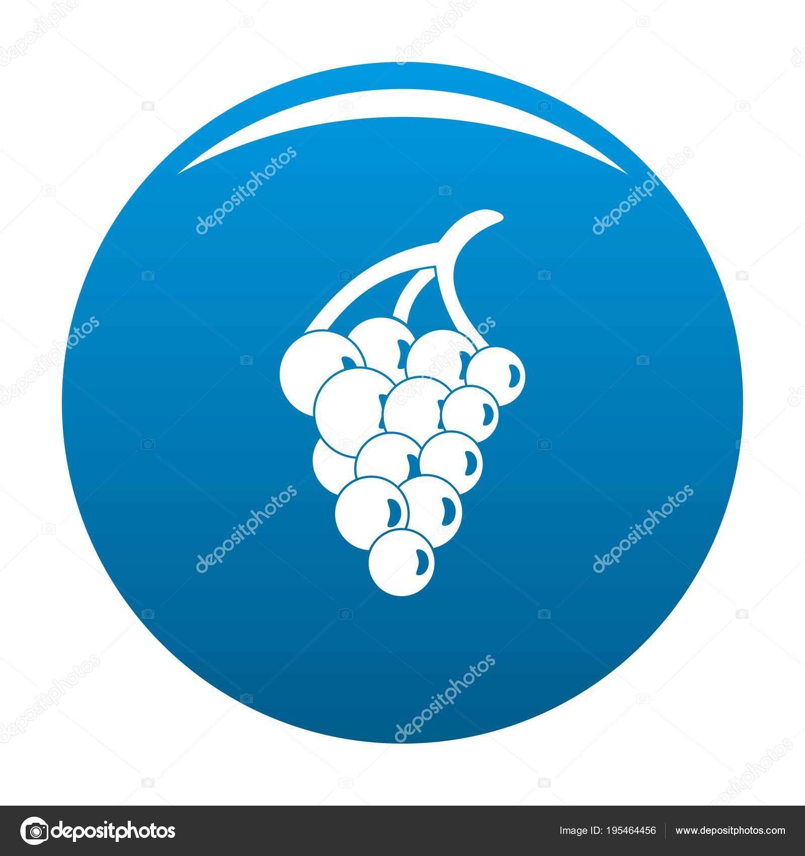 Grape For Restaurant Icon Vector Blue Stock Vector