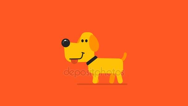 Sárga kutya és drone fogalom. Motion grafika.