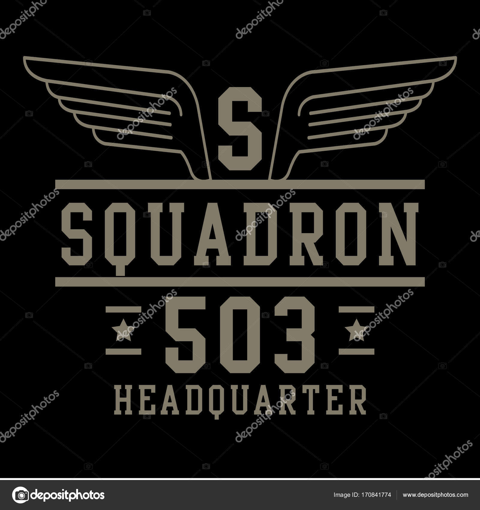 Air force squadron typography — Stock Vector © Syquallo