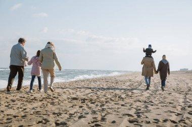 Big multigenerational family walking together on seashore stock vector