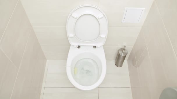 Servizi igienici di flushing. acqua scaricata nella tazza del cesso