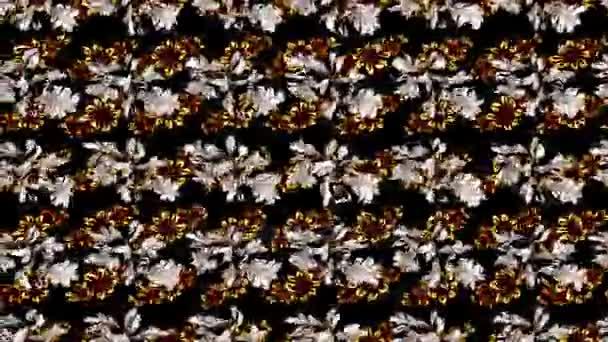 Motion Footage Schleife Zusammensetzung