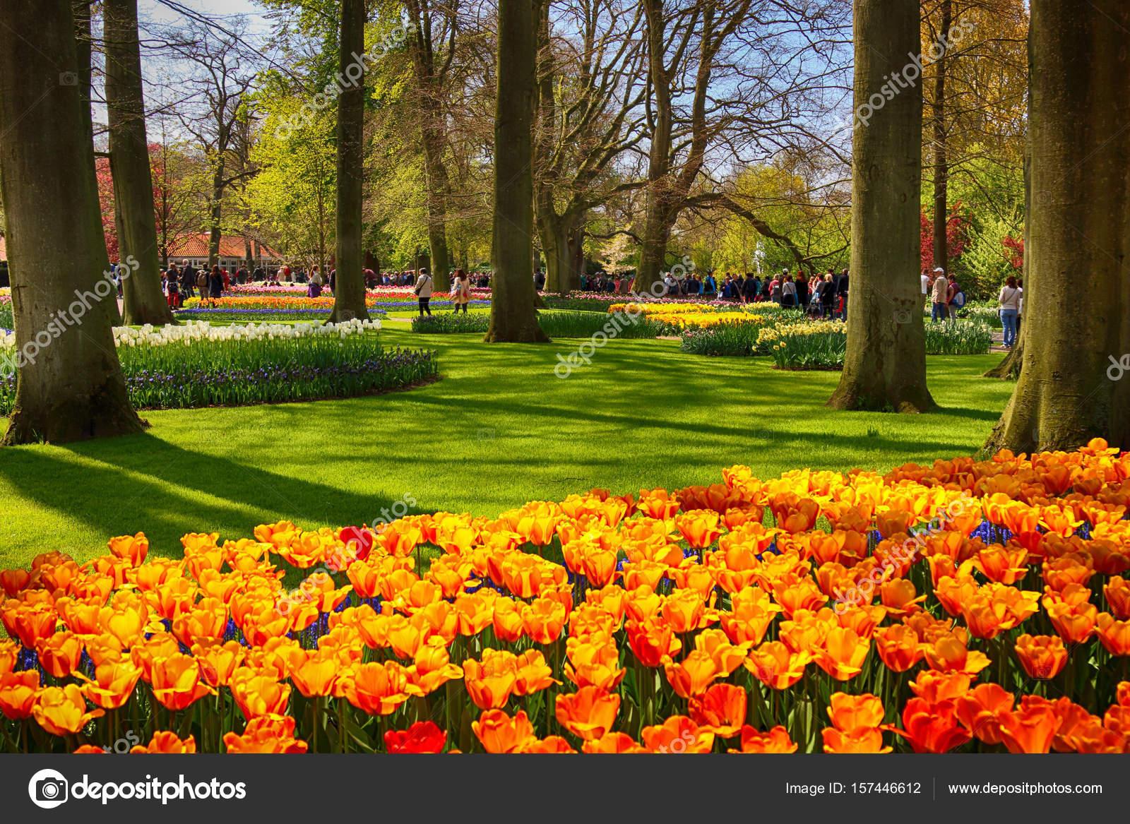 Giardino di keukenhof lisse paesi bassi 29 aprile 2017 - Casting giardini da incubo 2017 ...