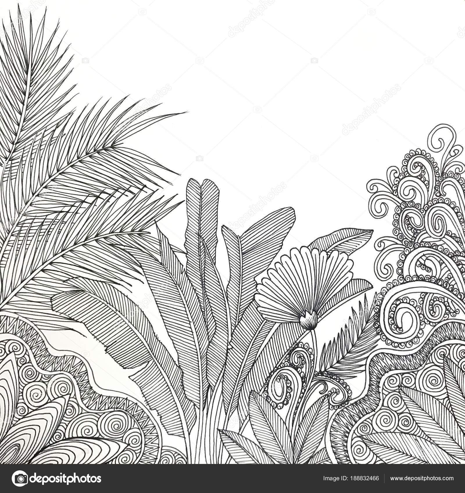 Divoka Zahrada Kresba Cernym Perem Stock Fotografie C Aekgasit