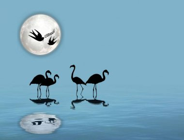 Herons and flamingos silhouette isolated in color mandala
