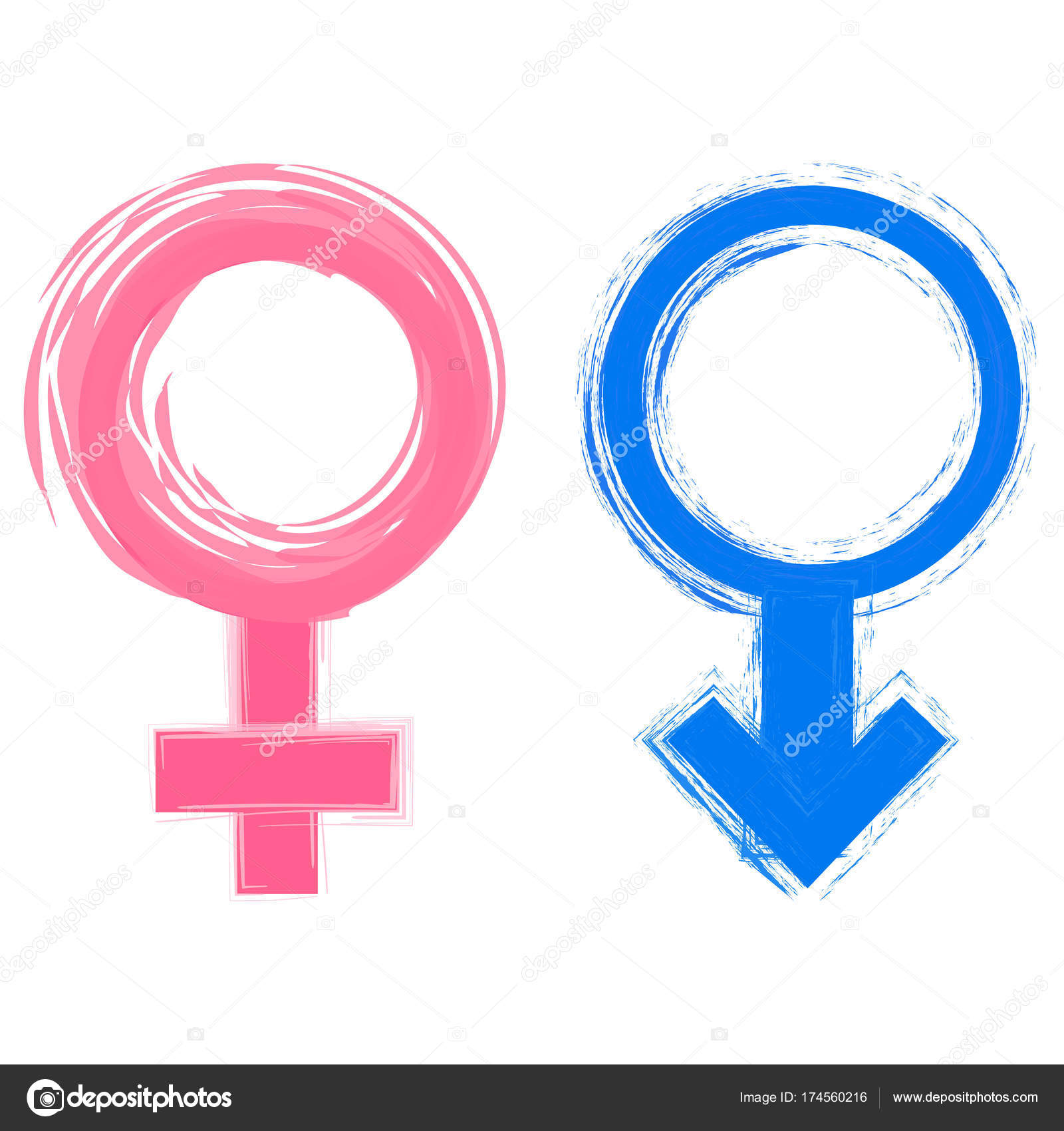 Vector Illustration Of Male And Female Gender Symbols Stock Vector