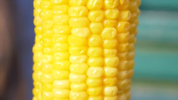 Kukuřičný klas jádra zblízka. ucho vařené kukuřice rotuje kolem své osy. 4k, pomalý pohyb