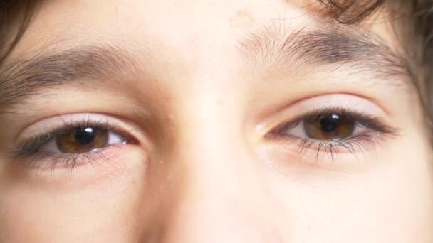 die braunen Augen eines Jungen mit langen schwarzen Wimpern. schaut er unter einem langen lockigen Vorderbein hervor. 4k, Zeitlupe, Nahaufnahme