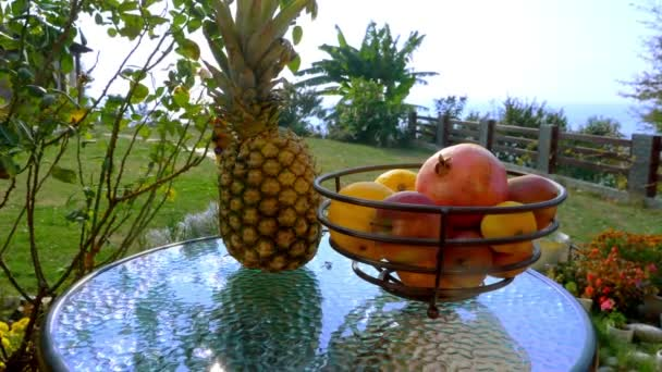 the fruit on the table in the garden at the back with sea views