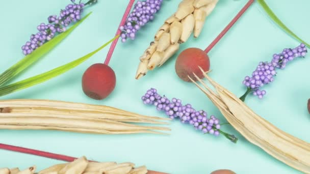 dry spikelets and sprigs of lavender , blue background. fashion color background