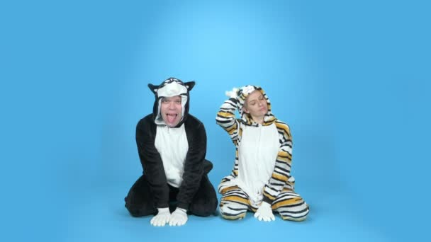 cat and dog. a woman and a man in a kigurumi cat and dog. blue background