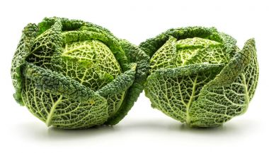 Savoy cabbage isolated on white background two fresh green head