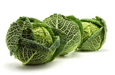 Three savoy cabbages isolated on white background fresh green heads in ro